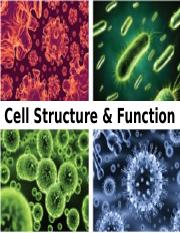 Cell Structure & Function (Ch 3) 2016DRAFT.pptx