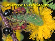 Lecture_22_mutualism_25%20March[1]
