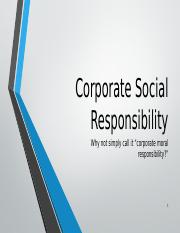 Corporate Social Responsibility-- the big picture