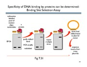 binding site selection