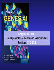chapter 17-Transposons_Part 1-2017