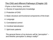4125 CNS and Afferent PathwaysWbCT2010
