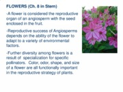 Flower morphology and function PL SC 221 Fall 2015 e-class