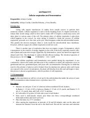 lab report celular respiration and fermentation(arlenys cuellar).docx