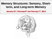 Chapter 5 Memory Structures