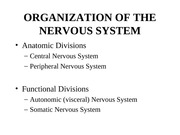 ANAT 2646 Organization of the Nervous System