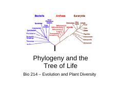 7-Phylogeny and the tree of life.pdf