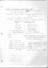 E.L.M and Terms Notes