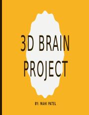 3D model of the brain project .pptx