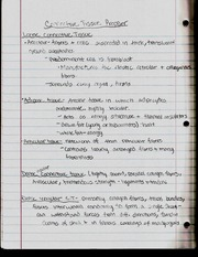 Connective Tissue Prepper Notes