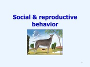 07 social and reproductive behavior