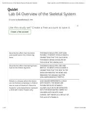Lab 04 Overview of the Skeletal System flashcards | Quizlet