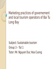 Marketing-practices-of-governement-and-local-tourism-operators.pptx