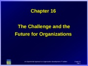 16-THE CHALLENGE AND THE FUTURE FOR ORGANIZATION