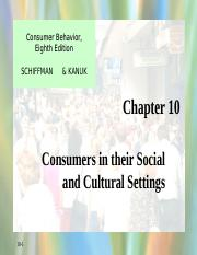 Social and Culture Schiffman10.ppt