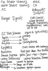 Notes on Fundamentals of Nutrition