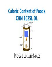 CHM 1025 DL Caloric Content of Food Pre-Lab Power Point 2017.pptx