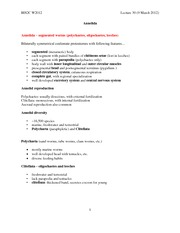 BIS2C Lect30 Annelida Outline