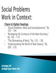 Social Problems Work in Context_Ch 8 - Large Slides.pdf