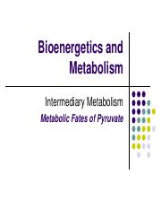 5- Metabolic Fates of Pyruvate-eClass.pdf
