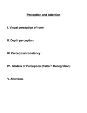 L4 Perception