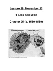 Immunology 5 T cells MHC