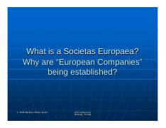 what_is_a_societas-europaea.pdf