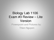[1106] Exam_3_Review