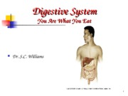 A_Digestive_System5_S10