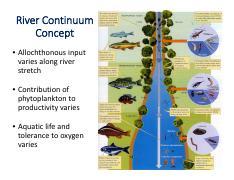Continuum Concept Pdf