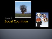 PSY BEH 173S: Social Cognition Lecture (Zinger)