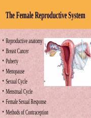 Female Repro.ppt