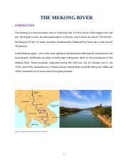 THE MEKONG RIVER.docx