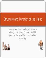Structurefunctionofthehandbjb.pdf