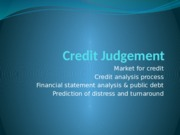 CFA 25410 Lect 06 Credit Judgement NSN