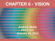 CH 6 - Vision