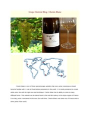 Grape Varietal Blog- Chenin Blanc REPORT
