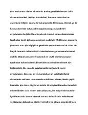 turkish_001731.docx