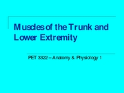 Lab 5 - Trunk and Lower Extremity