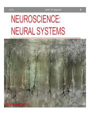 Lecture8_Neuro2_2_online
