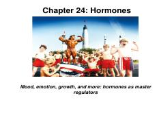 Chapter 24 (P) 2014 Hormones TO POST [Compatibility Mode]
