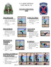 Dynamic Stretching - Trunk 2016