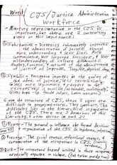 CJC 316 Class Notes- Minority Representation in the Criminal Justice System