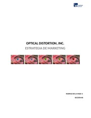 Optical_Distortion__Inc.