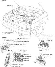 Engine Compartment_1