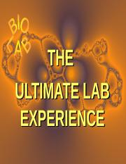 ultimate-lab-experience-2