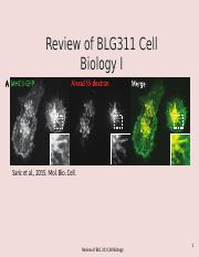 Lecture 1 review of BLG311 W2016