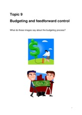 Topic 9 Budgeting and feedforward control