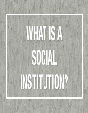 SA Social Institutions [Repaired].pdf
