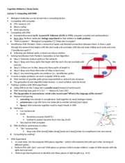 Cognitive Midterm 2 Study Guide